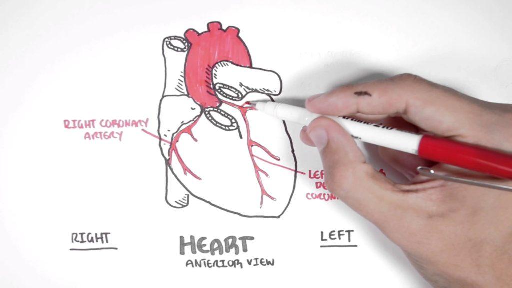 Nuovo sito chirurgia cardiaca